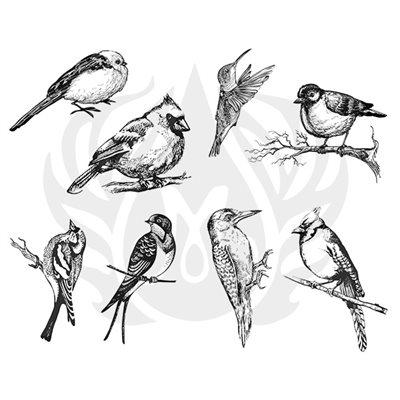 DSS-108 Aviary-Small Birds