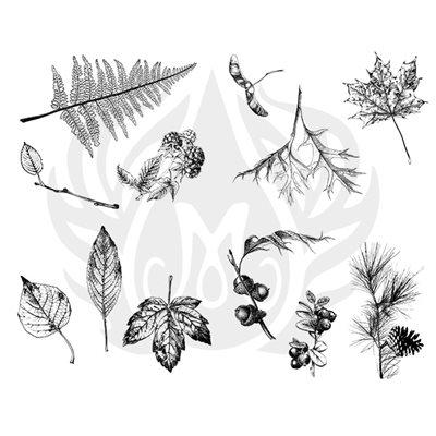 DSS-111 Botanical-Leaves