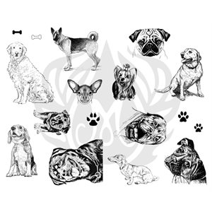 DSS119-Dogs
