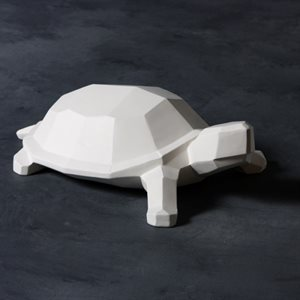 Faceted Turtle