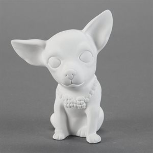 Brewser The Chihuahua